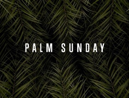 A Note for Palm Sunday